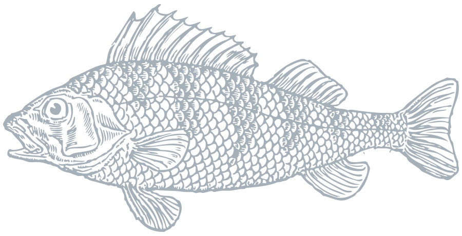 Searock Grill – fish graphic